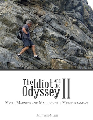 the idiot and the odyssey book