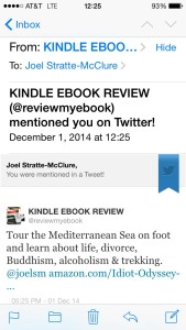 Kindle Ebook Review Tweet #3 mentions some of the themes covered by The Idiot.