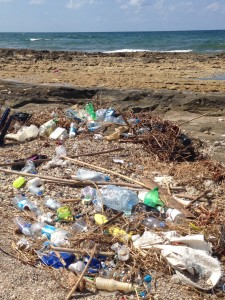 This is the photo that the handyman saw The idiot took before he reported him to the police. It's typical beach garbage found all over Lebanon's Mediterranean seaside.