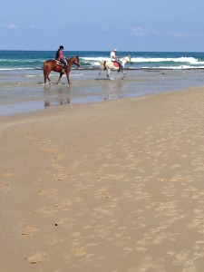 What impressed The idiot the most during his MedTrek down the coast of Israel to Tel Aviv? Was it... ....how much easier this would be on horseback when he saw these relaxed riders near Mikhmort.
