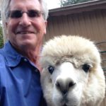 The Idiot ran into Echo at the Arapaho Rose Alpaca farm in Redding, CA. His interest in the visit was sparked when he learned that his Armani suit was made with alpaca fiber.