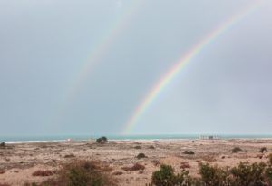 It was truly a thrill when The Idiot saw  a splendid double rainbow and a spectacular turquoise Mediterranean Sea after the first rain on December 1.